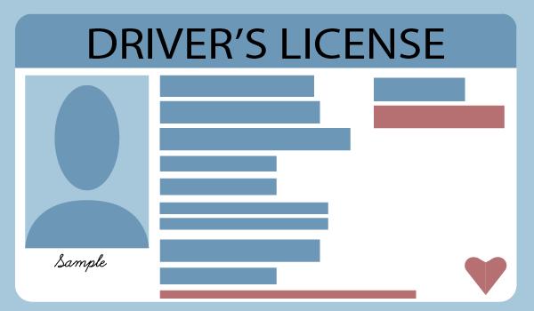Driver's License Agenda